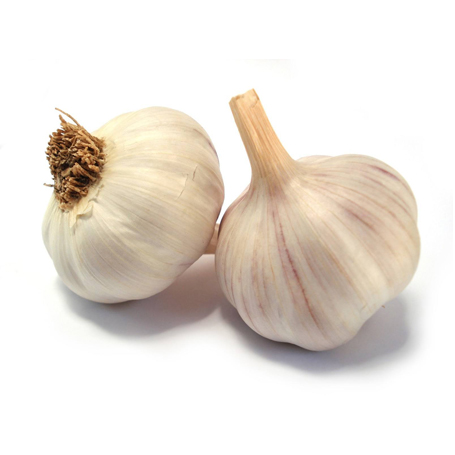 Garlic 3 Pack
